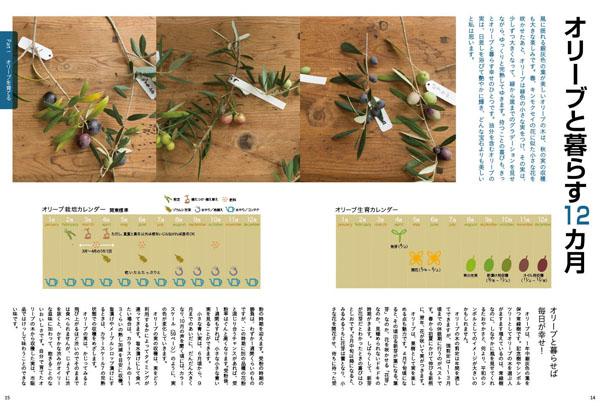 olive14-15